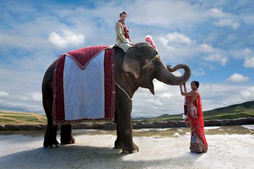 Indian wedding photography with elephant