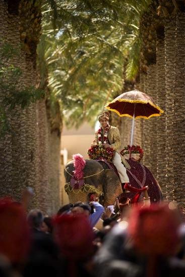 elephant at baraat of Indian wedding