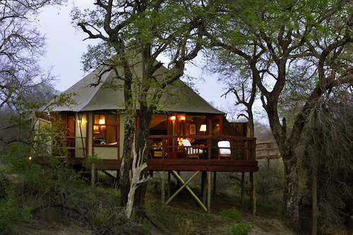 Hamiltons: A Luxury Tented Getaway in Kruger National Park