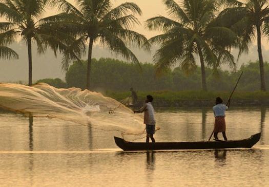 fishing in the backwaters in kerala