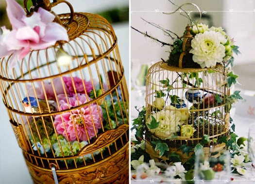 flowers used in bird cages in india